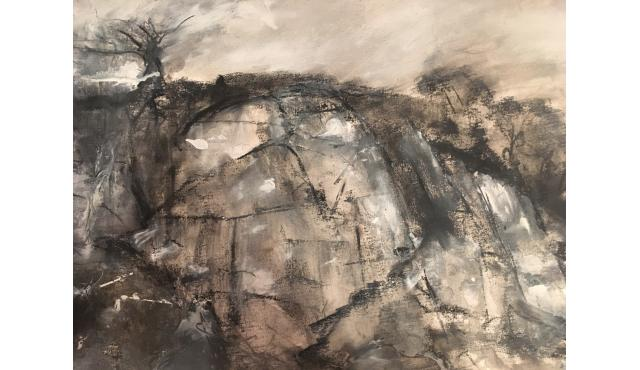 Quarry Dartmoor